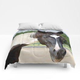 Decco Comforters