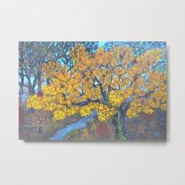 Fall Woods Metal Print
