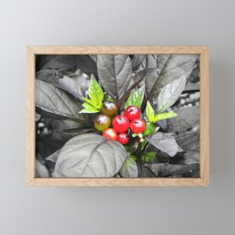 Holly Framed Mini Art Print