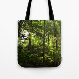 Forest // Silent In The Trees  Tote Bag
