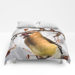 Cedar Waxwing Open Wide Comforters