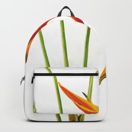 Heliconias Flower Backpack