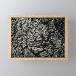 Rings Of Time Framed Mini Art Print