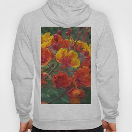 Red Bird of Paradise #1 Hoody
