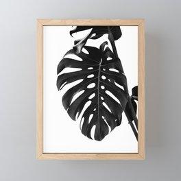 Monstera Delight #2 #tropical #decor #art #society6 Framed Mini Art Print