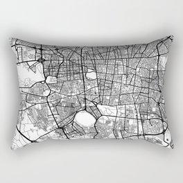 Teheran Map Gray Rectangular Pillow