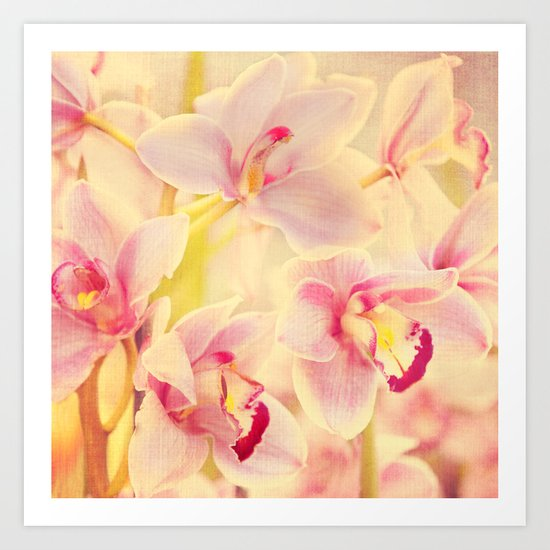 Orchid Melody Art Print