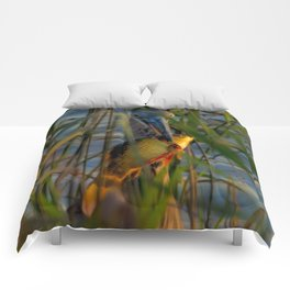 BLUE HERON'S FRIDAY SUNDOWN FISH FEAST Comforters