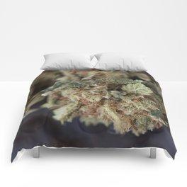 Medical Marijuana Deep Sleep Comforters
