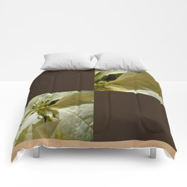 Pale Yellow Poinsettia 1 Blank Q3F0 Comforters