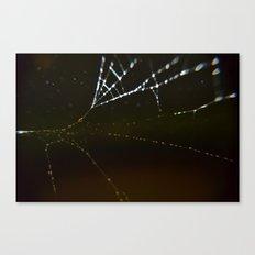 Watery Web Canvas Print