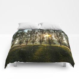 Penn State Arboretum Comforters