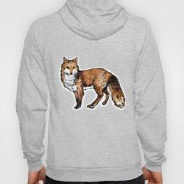 Brushed Fox Hoody