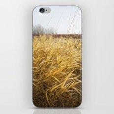 Sandy Delta Grass. iPhone & iPod Skin