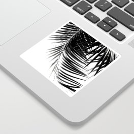 Palm Leaves Black & White Vibes #1 #tropical #decor #art #society6 Sticker