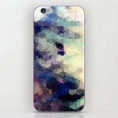 Reform 04. iPhone & iPod Skin