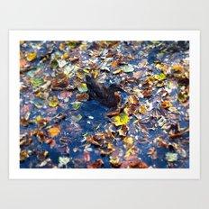 Falling, Splashing Art Print