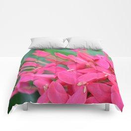Pink Petals CR Comforters