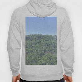 Forest of eucalyptus and pine trees Hoody
