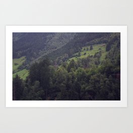 Swiss Mountain Forest Art Print