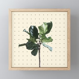 Home Ficus Framed Mini Art Print