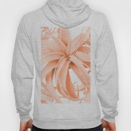 Coral Color Air Plant White Background #decor #society6 #buyart Hoody