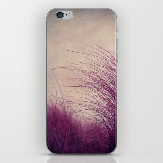 Winterbreeze iPhone & iPod Skin