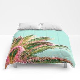 Fiesta palms Comforters