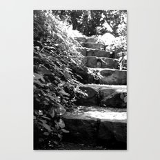 A Step Up Canvas Print