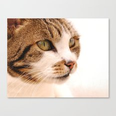 Best cat in town Canvas Print