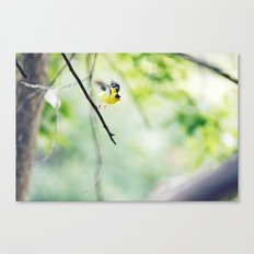 take flight Canvas Print
