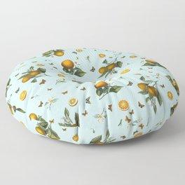 Oranges and Butterflies on Mint Floor Pillow