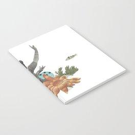Océano Notebook