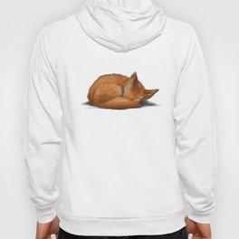 Let Sleeping Foxes Lie Hoody