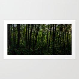 HDR Sunrise V Art Print