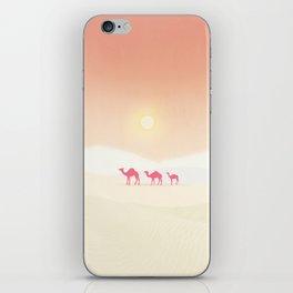 Minimal desert iPhone Skin