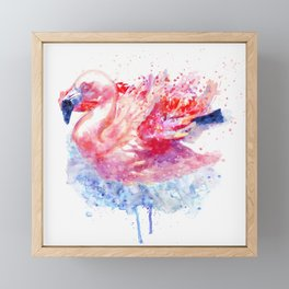 Flamingo on the Water Framed Mini Art Print