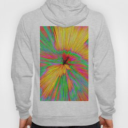 Explosion Of Color On Canvas Hoody