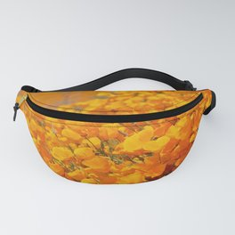 Golden Meadow of California Poppies in Bloom by Reay of Light Photography Fanny Pack