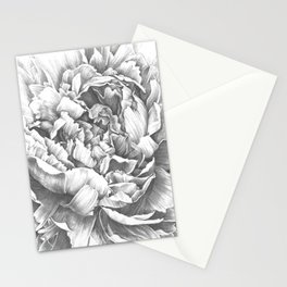 Peony In the Name of Love  Stationery Cards