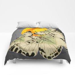 GOLDEN MOON MOTHS ON GREY Comforters
