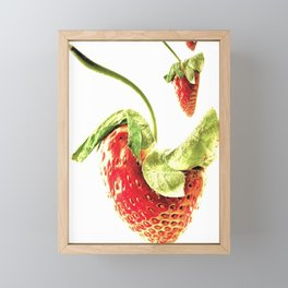 Strawberry Trio Framed Mini Art Print