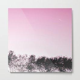 Lovely pink sky Metal Print