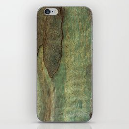 Eucalyptus Tree Bark 6 iPhone Skin