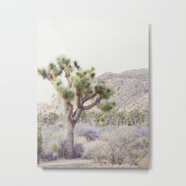 Pale Desert - Joshua Tree Boho Landscape Photography Metal Print