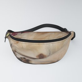 A Christmas Nap Fanny Pack