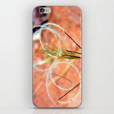 Whirligigs  iPhone & iPod Skin