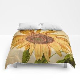 Vintage Sunflower Comforters