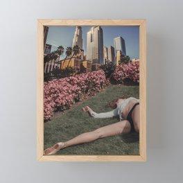 _DSC4551 Framed Mini Art Print