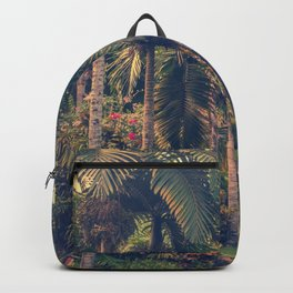 The Dreaming Backpack